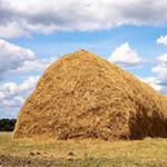 A haystack in an open field underneath a blue sky with some clouds