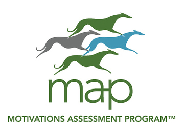 Artemis MAP (Motivations Assessment Program) logo